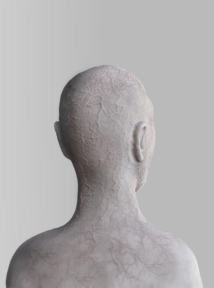 zbrushdocumentrug2copy
